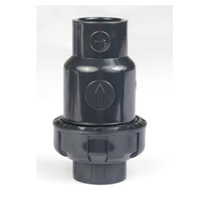 Single Union Check Valve