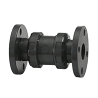 Flanged True Union Check Valve